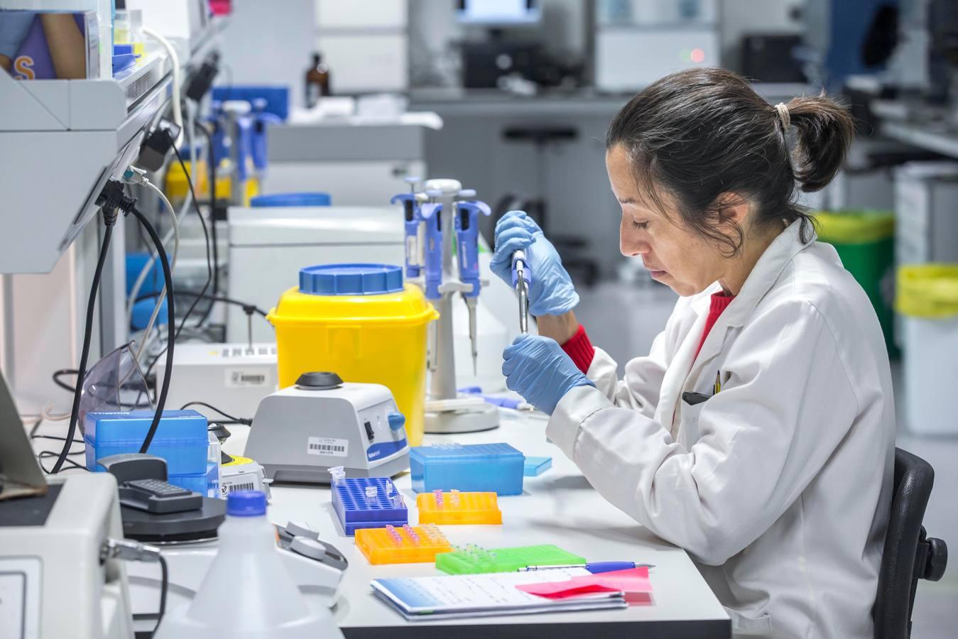 El viaje de la biopsia al diagnóstico   El Diario Montañes